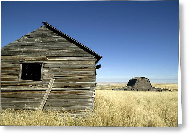 Abandoned Farmstead In Southern Alberta Greeting Card by Pete Ryan