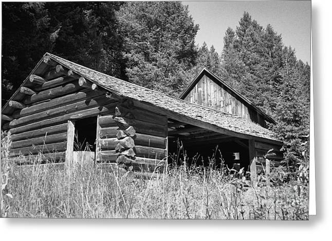 Abandoned Greeting Cards - Abandoned Homestead Greeting Card by Richard Rizzo