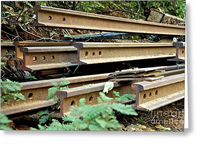 Steal Prints Greeting Cards - Abandoned Railroad Tracks Greeting Card by Jason Waugh