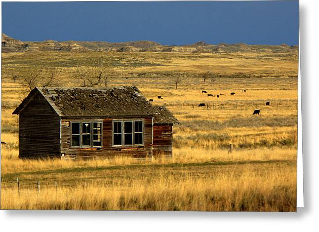 Abandoned School House. Greeting Cards - Abandoned Schoolhouse Greeting Card by Tam Graff
