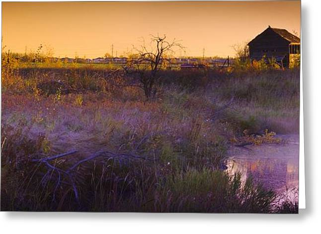 Farm Structure Greeting Cards - Abandoned Shack At Sunset Near A Creek Greeting Card by Corey Hochachka