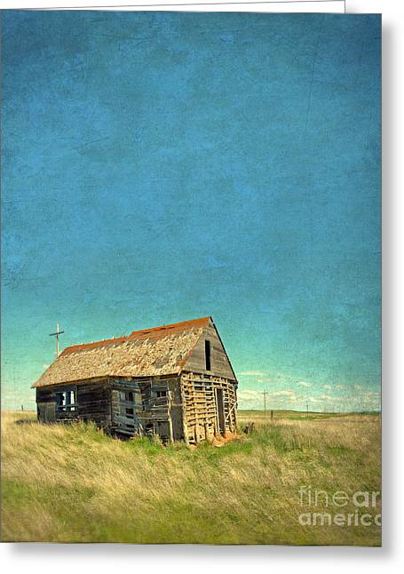 Outbuildings Greeting Cards - Abandoned Shack Greeting Card by Jill Battaglia