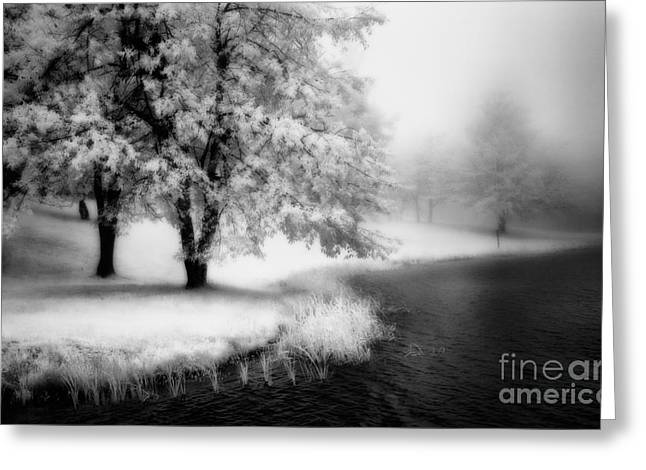 Abstract Mountains Framed Prints Greeting Cards - Abbots Lake in the Fog BW Greeting Card by Dan Carmichael
