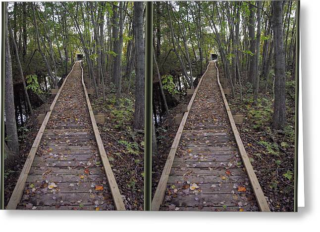 Abbott's Mill Trail - Gently Cross Your Eyes And Focus On The Middle Image Greeting Card by Brian Wallace