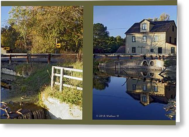 Nature Center Pond Greeting Cards - Abbotts Pond - Gently cross your eyes and focus on the middle image Greeting Card by Brian Wallace
