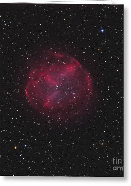 Bipolar Greeting Cards - Abell 74, Planetary Nebula Greeting Card by Don Goldman