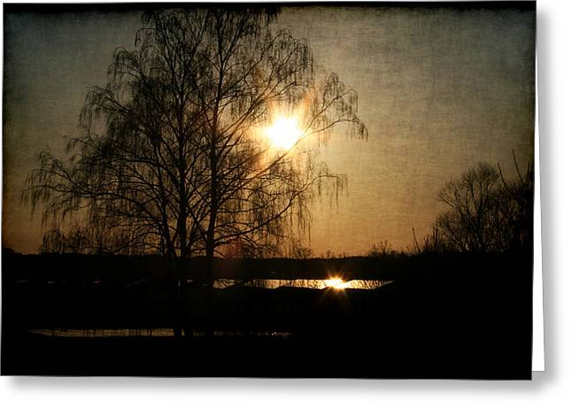 Li Van Saathoff Greeting Cards - Abendstimmung Greeting Card by Li   van Saathoff