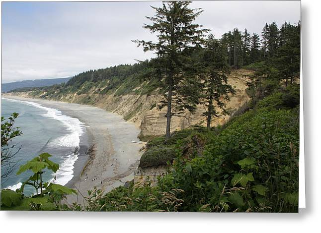 Best Sellers -  - Agate Beach Greeting Cards - Above Agate Beach Greeting Card by Michael Picco