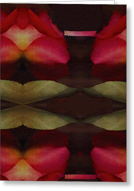 Rose Petals Mixed Media Greeting Cards - Abstract Greeting Card by Pepita Selles