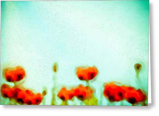 Abstract Digital Photographs Greeting Cards - Abstract Poppies Greeting Card by Tom Gowanlock