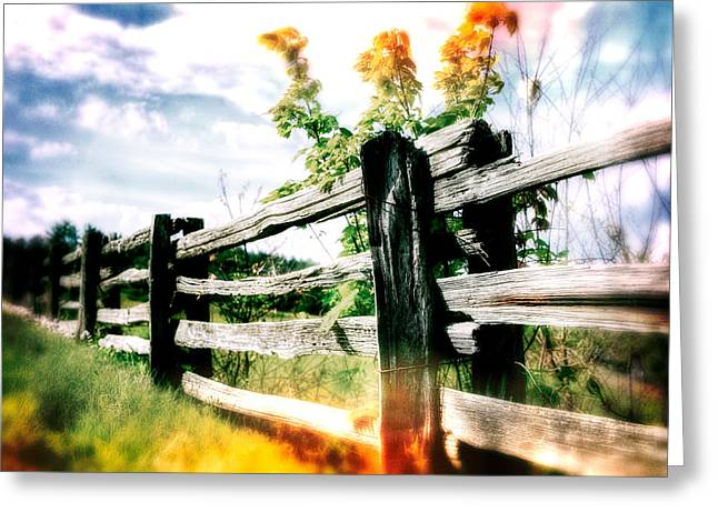 Pasture Framed Prints Greeting Cards - Abstract Rail Fence Greeting Card by Dan Carmichael