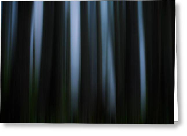 Juan De Fuca Greeting Cards - Abstract Trees and Fog Greeting Card by Matt Dobson