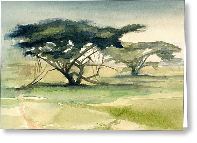 Acacia Greeting Card by Stephanie Aarons