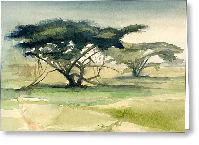 Acacia Greeting Card by Stephanie Aarons