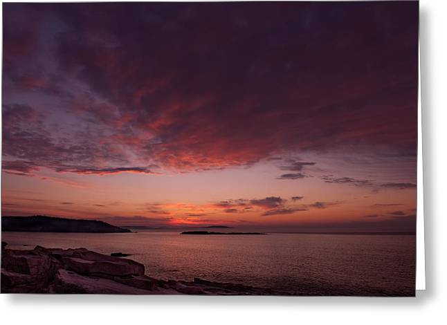 Sunrise Greeting Cards - Acadia Dawn Greeting Card by Steve Gadomski