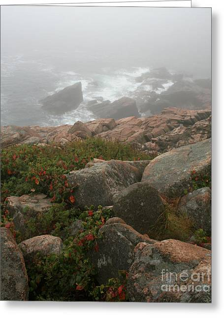 Moss Green Greeting Cards - Acadia National Park Foggy Coast Greeting Card by Chris Hill