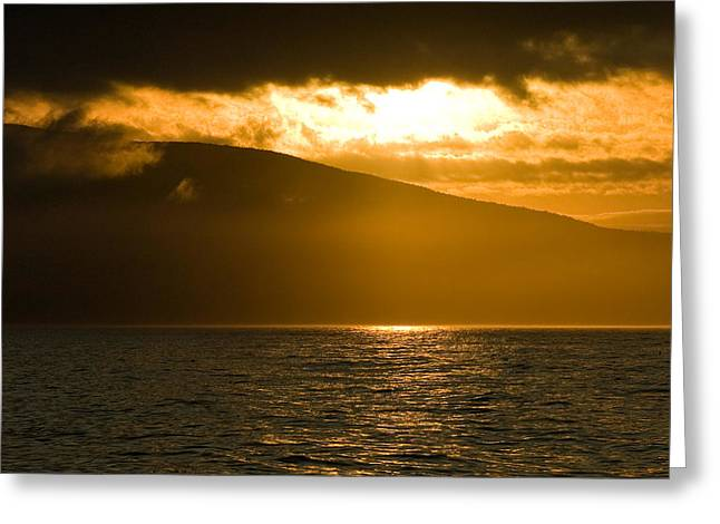 Cloud Greeting Cards - Acadia National Park Sunset Greeting Card by Sebastian Musial