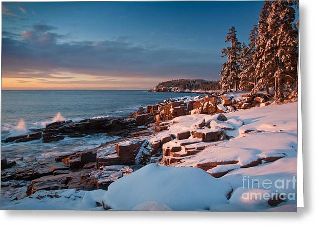 Recently Sold -  - New England Ocean Greeting Cards - Acadian Winter Greeting Card by Susan Cole Kelly