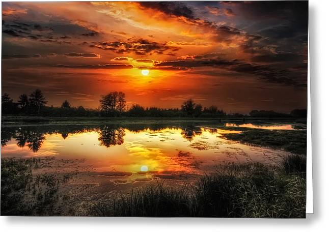 Ev Greeting Cards - Accese riflessioni Greeting Card by Maurizio Fecchio