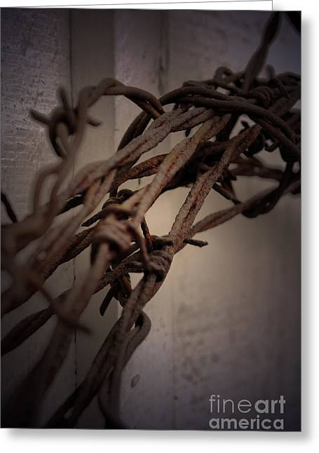 Barbed Wire Fences Greeting Cards - Across From Yesterday Greeting Card by C E Dyer
