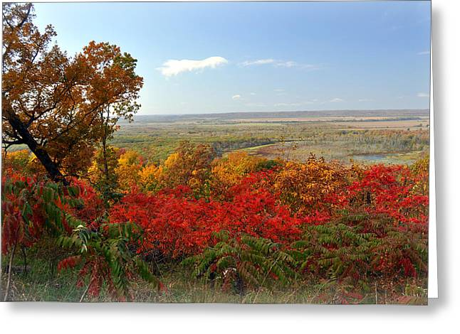 Marty Koch Greeting Cards - Across the Big Muddy Greeting Card by Marty Koch