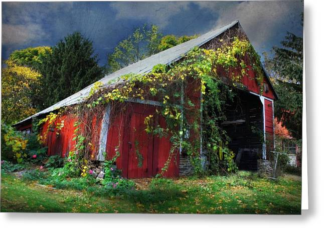 Grape Vines Greeting Cards - Adams County Winery Greeting Card by Lori Deiter