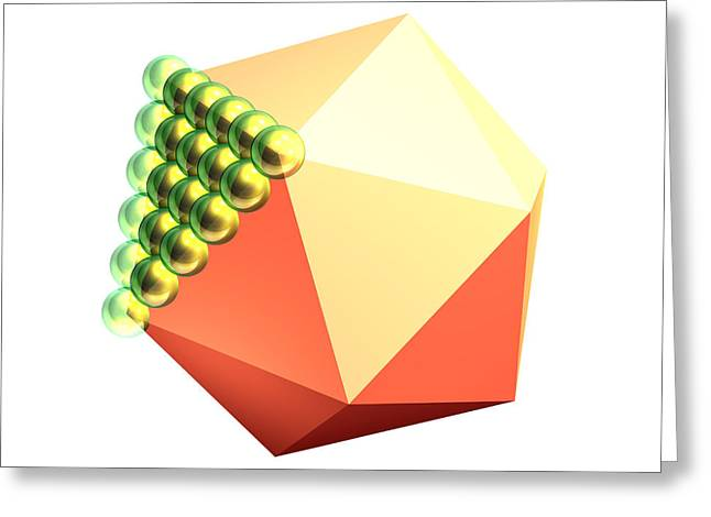 Microbiology Greeting Cards - Adenovirus Capsid Model Greeting Card by Laguna Design