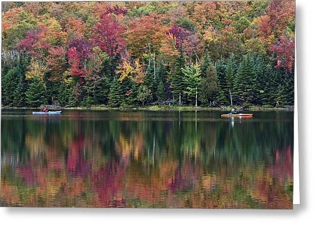 Heart Lake Greeting Cards - Adirondack Park Autumn - Heart Lake Greeting Card by Brendan Reals