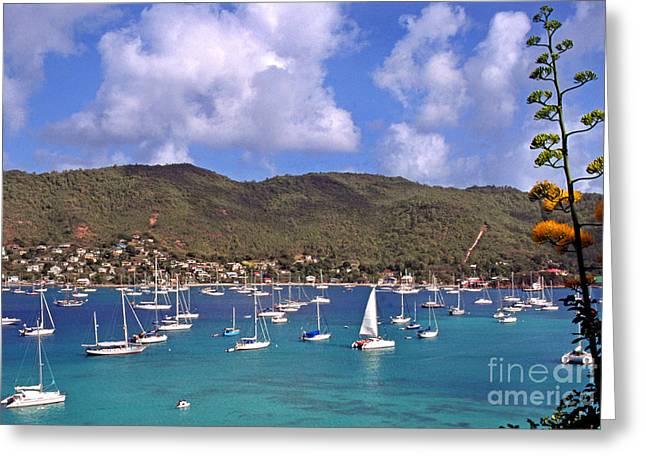 Grenadine Greeting Cards - Admiralty Bay Greeting Card by Thomas R Fletcher