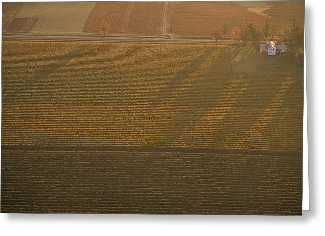 Finger Lakes Greeting Cards - Aerial Over Farmland Near The Finger Greeting Card by Kenneth Garrett