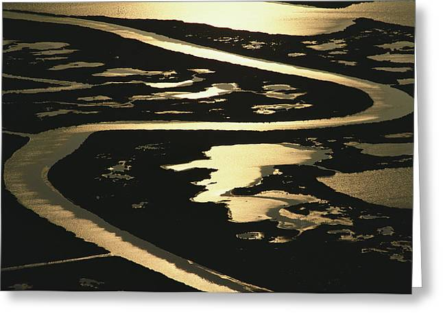 Light And Dark Greeting Cards - Aerial View Of Blackwater National Greeting Card by Skip Brown