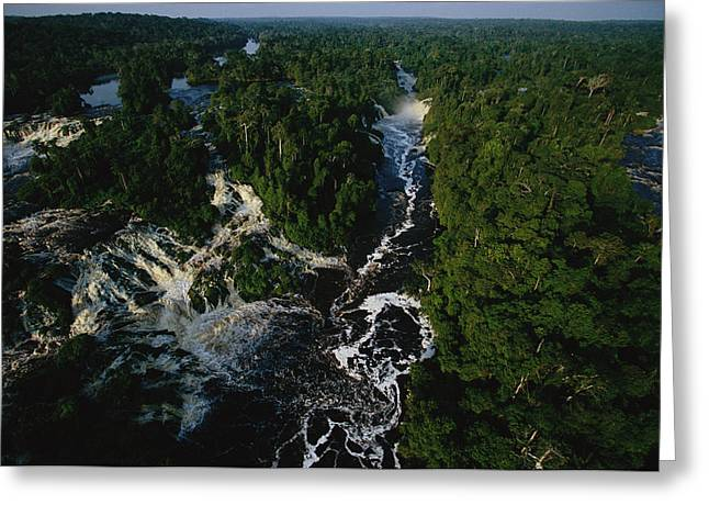 Fall Scenes Greeting Cards - Aerial View Of The Thundering Greeting Card by Michael Nichols
