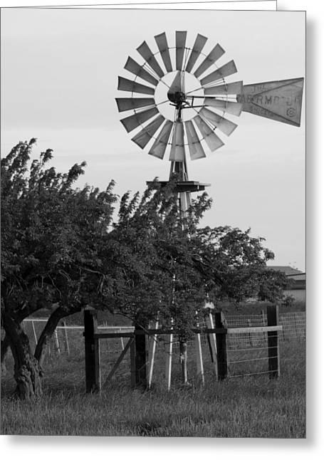 Aermotor Greeting Cards - Aermotor Windmill San Joaquin County CA Greeting Card by Troy Montemayor