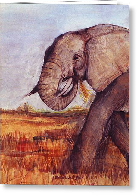 Painted Details Drawings Greeting Cards - African Elephant Greeting Card by Rebecca Lilley