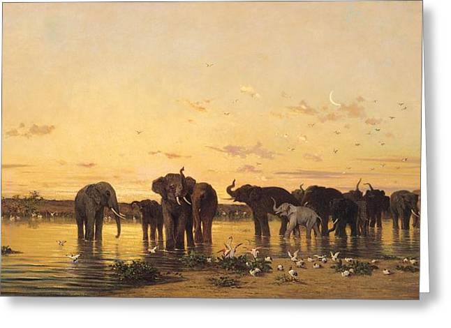 Drinks Greeting Cards - African Elephants Greeting Card by Charles Emile de Tournemine