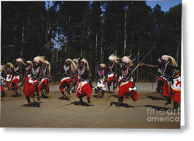 Science Collection - Greeting Cards - African Intore Dancers Greeting Card by Elizabeth Kingsley