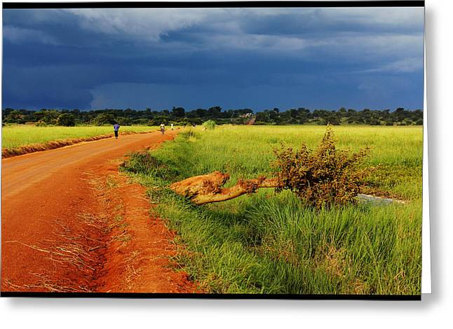 African Landscape Greeting Card by Marian Barbu