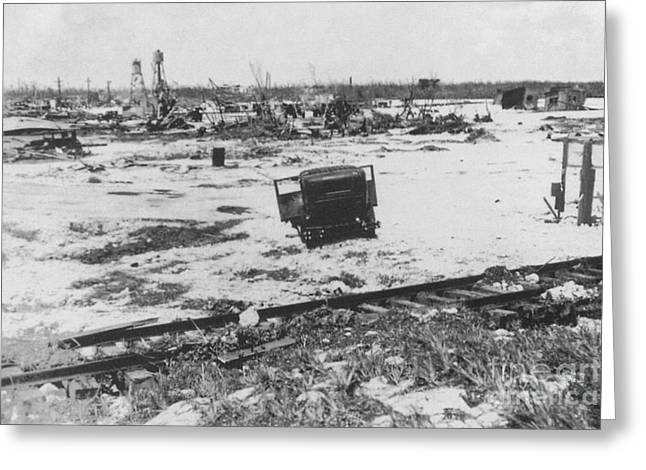 Devastated Greeting Cards - After 1935 Labor Day Hurricane, 2 Of 2 Greeting Card by Science Source