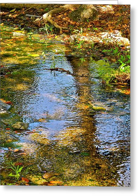 Trees Reflecting In Water Greeting Cards - After Monet or Reflections in the Stream Greeting Card by Kirsten Giving