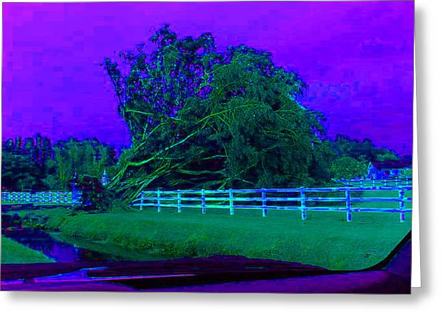 After The Hurricane Blues Greeting Card by Val Oconnor