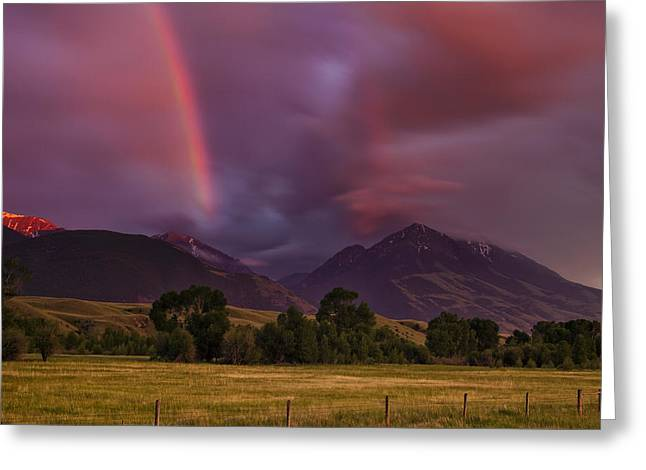 Western Usa Greeting Cards - After the Storm Greeting Card by Andrew Soundarajan