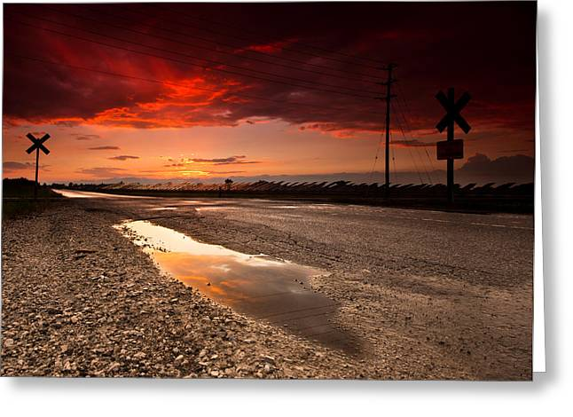 Puddle Greeting Cards - After the Storm Greeting Card by Cale Best