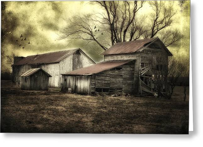 Storm Prints Digital Greeting Cards - After the Storm Greeting Card by Mary Timman