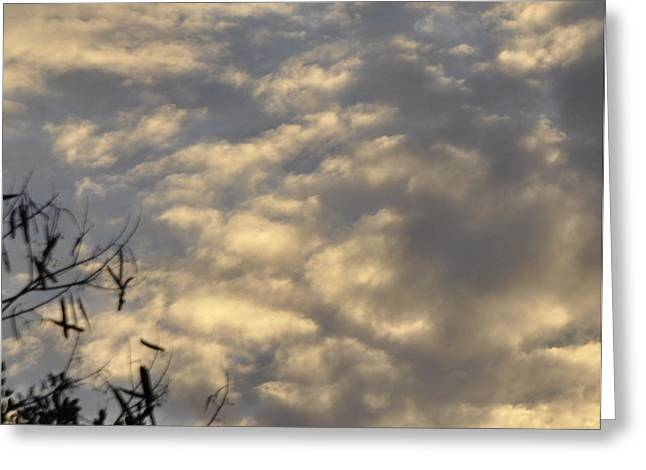 Sun Breaking Through Clouds Photographs Greeting Cards - After the Storm Greeting Card by Sandy Poore