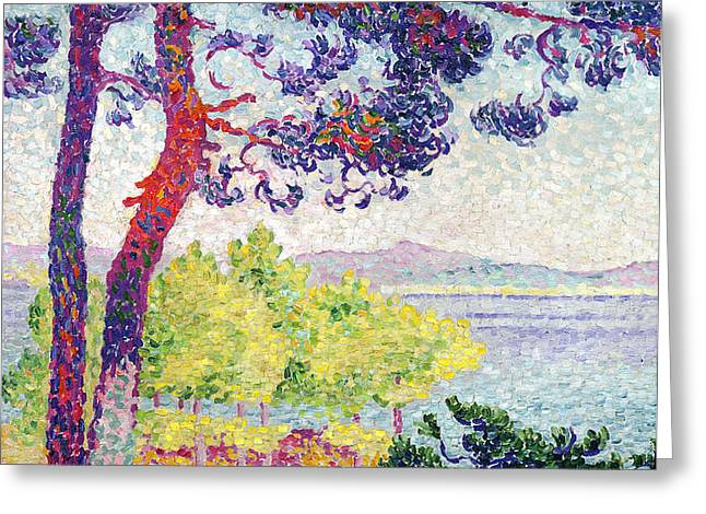 Afternoon at Pardigon Greeting Card by Henri-Edmond Cross