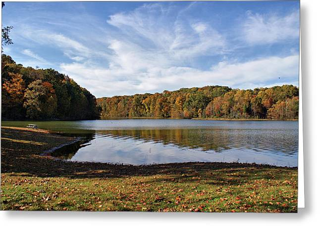 Indiana Trees Greeting Cards - Afternoon at the Lake Greeting Card by Sandy Keeton