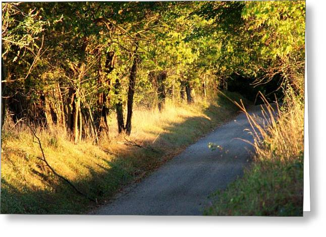 Mountain Road Greeting Cards - Afternoon Delight Greeting Card by Michael L Kimble