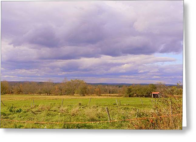 Afternoon In The Country Greeting Card by Katina Cote