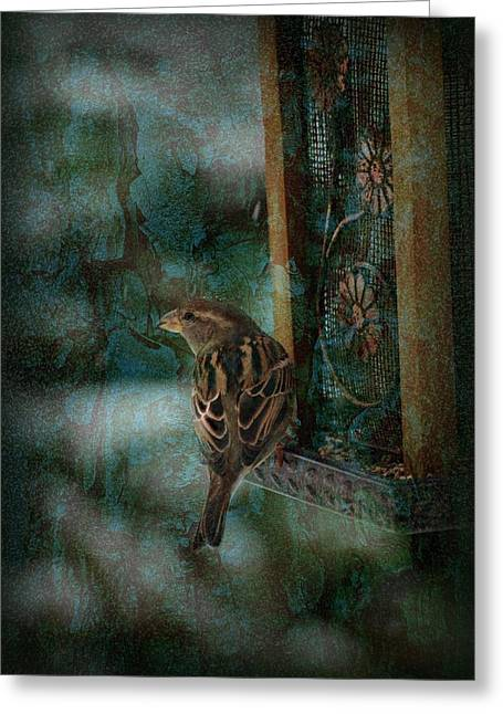 Snow Seeds Greeting Cards - Afternoon Of A Sparrow Greeting Card by Angie Tirado