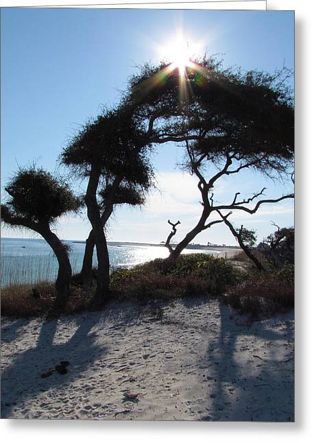 Panama City Beach Greeting Cards - Afternoon Sun Greeting Card by Bryan Goebert